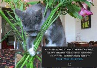 screenshot of feline usability tester